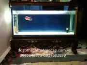 bể cá gỗ gụ BC09