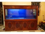bể cá gỗ dổi BC15